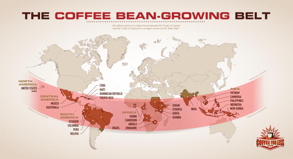Cureaua cafelei